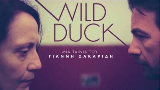 Wild Duck (2013) 11