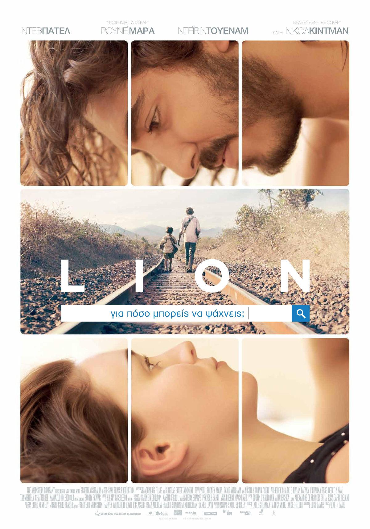 lion-01