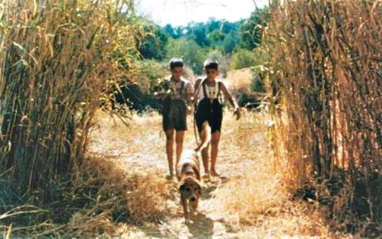 Το Δέντρο που Πληγώναμε (1986) 03