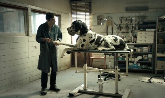 Dogman 02